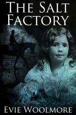 The Salt Factory by Evie Woolmore